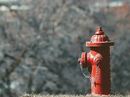 Red fire hydrant in a yard